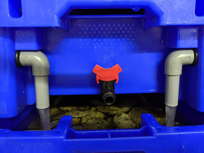 Oyster Pod running trays overflow