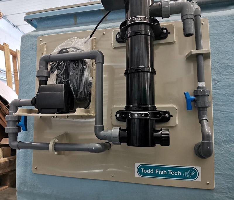 Bivalve Purification small tank pump and UV